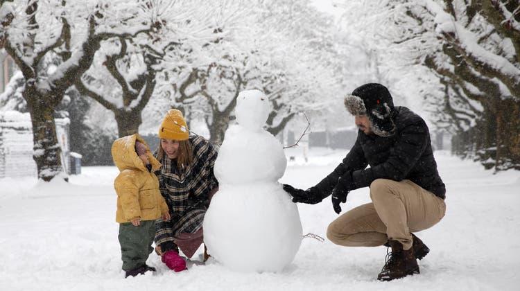 Familie Straumann (Tobias Straumann und Claudia Straumann mit Kind Kaia) bauen einen Schneemann am Quai in Zug. (Bild: Matthias Jurt (Zug, 15. Januar 2021))