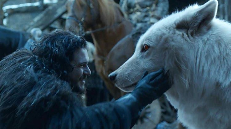 Schattenwölfe treten in der Serie «Game of Thrones» auf. (Bild: HBO)