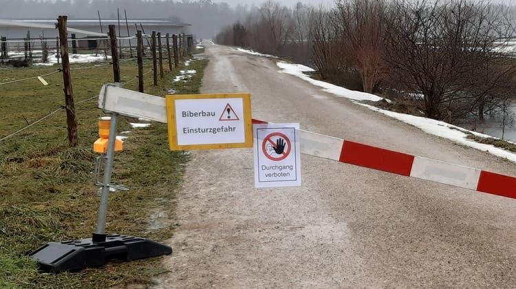 Der Unterbodenweg ist seit dieser Woche gesperrt. (Stefanie Garcia Lainez)