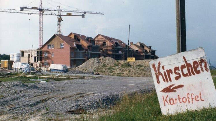 Kein geschönter Blick: «Ex Voto» (1986) vonErich Langjahr (Zvg)
