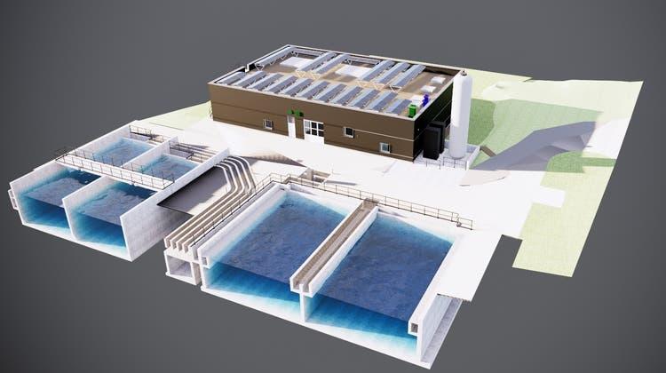 Das neue Gebäude (braun) soll im nordwestlichen Teil des Areals errichtet werden. (zvg)