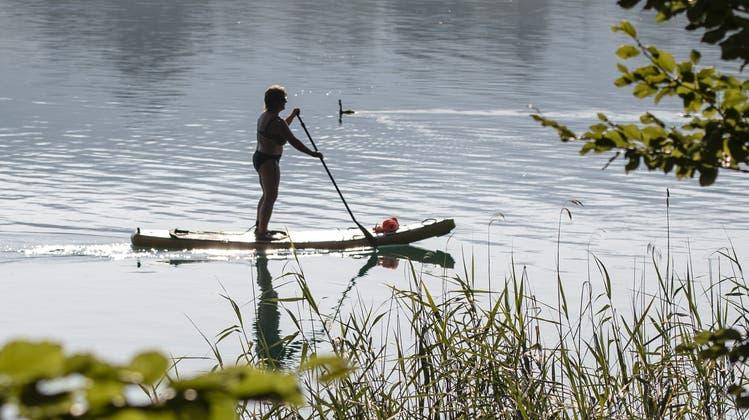 Wer mit einem Stand-up-Paddleunterwegs ist, sollte auf die Wasserfauna Rücksicht nehmen. Im Bild das Ufergebiet des Hallwilersees zwischen Beinwil am See und Mosen. (Bild: Urs Flüeler/Keystone (23. Juli 2019))