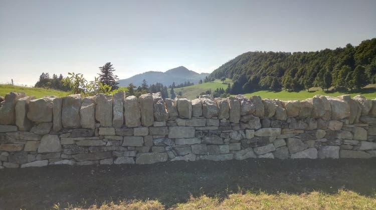 Blick auf die sanierte Trockensteinmauer. (Zvg)