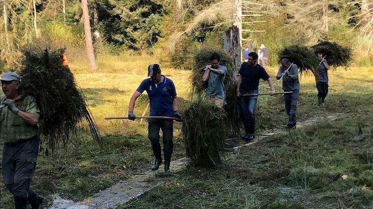 Wiederum zahlreiche Helferinnen und Helfer bei den Pflegearbeiten in den Naturschutzgebieten von Niederrohrdorf