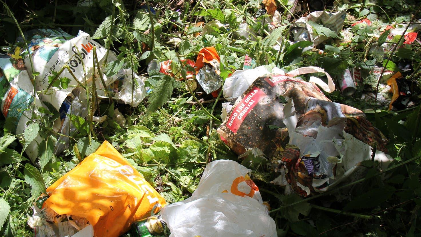 Ein 31-Jähriger wurde rechtskräftig verurteilt, weil er im Bremgarter Wald seinen Abfall illegal entsorgte. (Symbolbild: mzm)