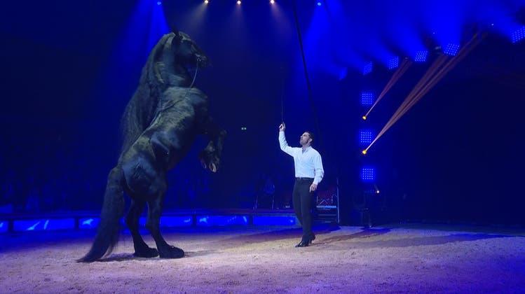 Standing Ovation im Chapiteau: Das war die Knie-Premiere auf dem Sechseläutenplatz