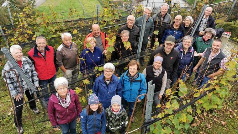 Nach einem anspruchsvollen Jahr konnten die Weinfreunde Niederbüren weniger Trauben lesen. (Bild: PD)