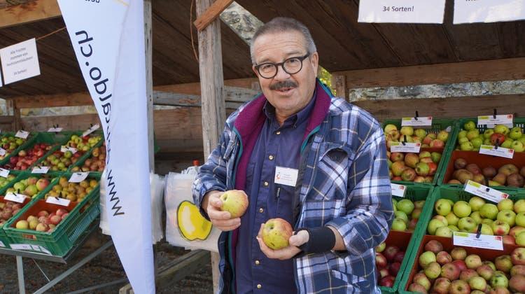 Hermann Graser mit seinem Lieblingsapfel, dem Begginger Glockenapfel. (Sibylle Haltiner / Aargauer Zeitung)