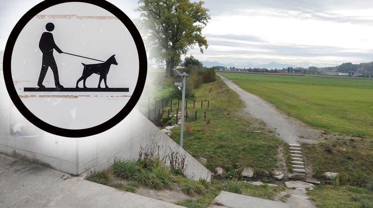 Der Übergang über den Büelisacherkanal soll mit einem Handlauf versehen werden und der Stein durch eine Betonplatte ersetzt werden. (Nathalie Wolgensinger)