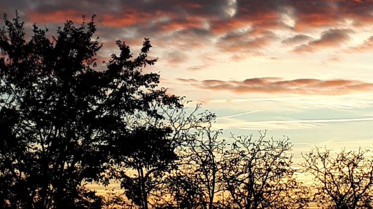Abendstimmung auf meinem Balkon, Sicht gegen Dietikon (Marianne Hugentobler)