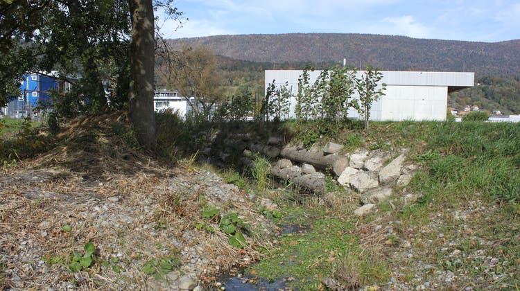 Der renaturierte Moosbach mit dem Gebäude der neuen Fernwärmezentrale im Hintergrund. (Margrit Renfer)