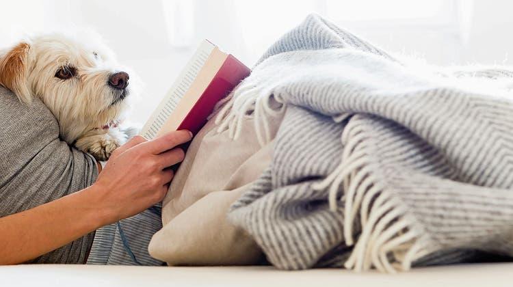 Die Kunst des Liegens stellt drei Bedingungen: Eine warme Decke, ein stummer Begleiter und ein gutes Buch. Der Winter kann kommen. (PD)