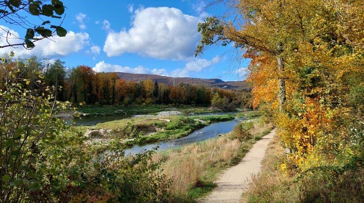Herbstliche Stimmung an der alten Aare in Däniken. (Willy Bütikofer)