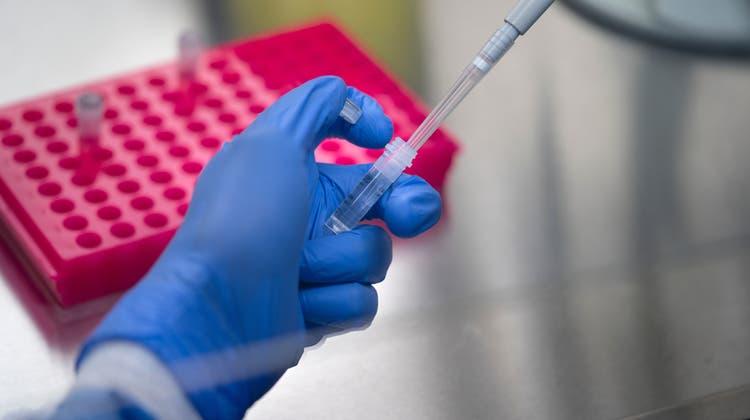 Die Labors haben über das Wochenende insgesamt 64'922 Corona-Tests ausgewertet. (Symbolbild) (Keystone)