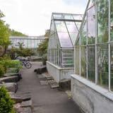 Neue Grün- und Freiräume sollen sich rund um die Sukkulenten-Sammlung beim Mythenquai bilden. (Archivbild) (Keystone)