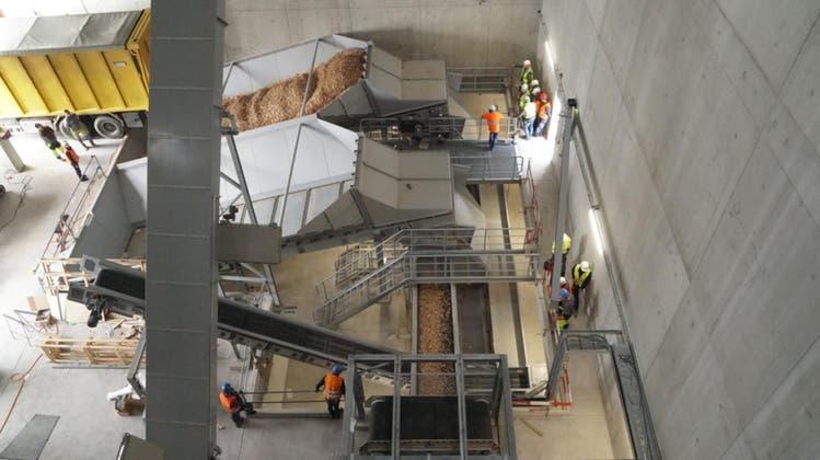 Pro Jahr werden für das Holzheizkraftwerk Sisslerfeld rund 110'000 Tonnen Holzschnitzel benötigt. (Zvg)