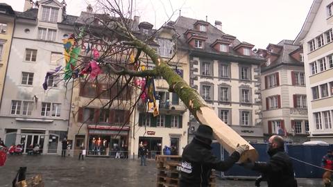 So sah der Guuggerbaum2020 aus. (Bild: vereinigte.ch)