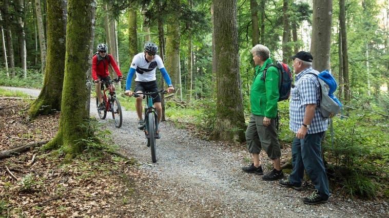 Führt hin und wieder zu Schwierigkeiten: Biker und Wanderer kreuzen sich. (Bild: Dominique Meienberg)
