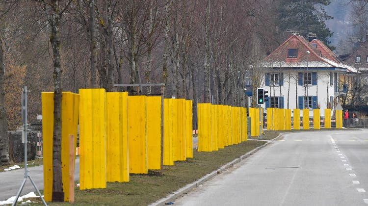 So packte Bruno Leus anno 2005 die Lindenallee ein... (Foto: frb)