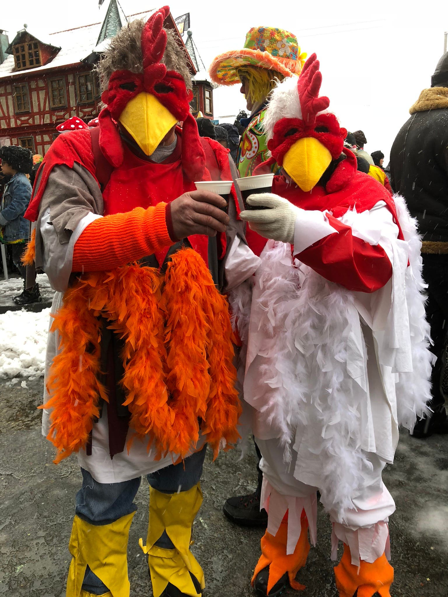 Huhn und Hahn geniessen den Gratis- Lutz der CS.