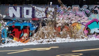 Bunte Schriftzüge, so weit das Auge reicht: Die Graffiti-«Hall of Fame» beim Freigleis. (Bild: Nadia Schärli (Kriens, 9. Februar 2021))