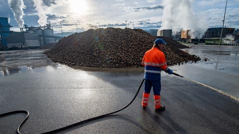 Ein Berg von Zuckerrüben auf dem Areal der Zuckerfabrik Frauenfeld. (Bild: Reto Martin (23. Dezember 2020))