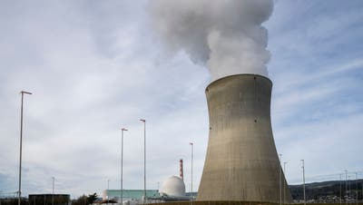 Im Kernkraftwerk Leibstadt wird man bald schon wieder in Deutschland gefertigte Brennelemente entgegennehmen dürfen. (Alex Spichale (4.2.2021))
