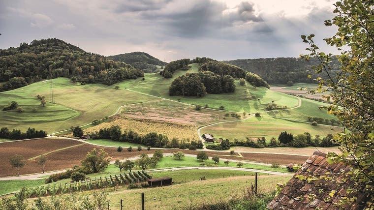 Die Hügellandschaft zwischen Mandach– eine der neuen Parkgemeinden ab 2022 – und Hottwil, Gemeinde Mettauertal. (Bild: zvg/kleineweltwunder.ch)