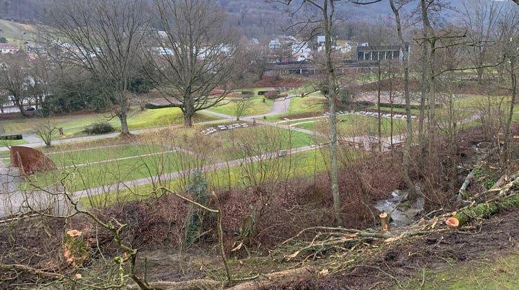Entlang des Dorfbachs liegen die gefällten Bäume. (ZvG)