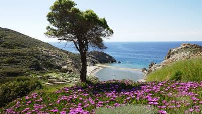 Agios Kirykos (© Imbach Reisen AG)