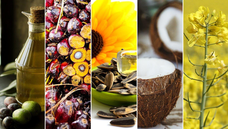 Indonesien ist der weltweit grösste Anbauer von Palmöl, dicht gefolgt von Malaysia. Palmkernöl wird unter anderem für Nutella verwendet. (Keystone)