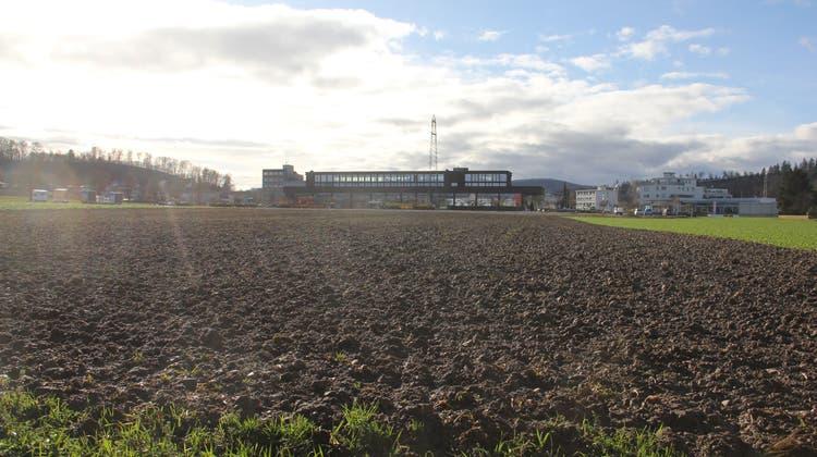 Das Gebiet «im Winkel» in Windisch ist die grösste Baulandreserve in der Region Brugg. (Bild: cm (29. Dezember 2020))