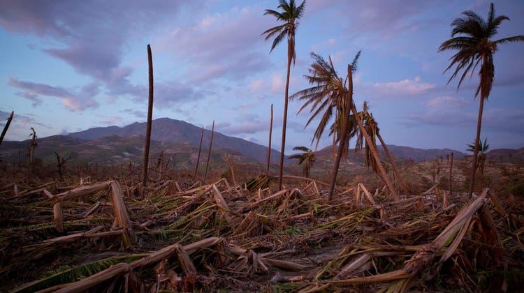 Der Inselstaat Haiti wird immer wieder von Naturkatastrophen heimgesucht. Besonders schwerwiegend waren die Folgen von Hurrikan Matthew 2016. Alleine im Süden Haitis zerstörte er mindestens 29'000 Häuser. (Rebecca Blackwell / AP)