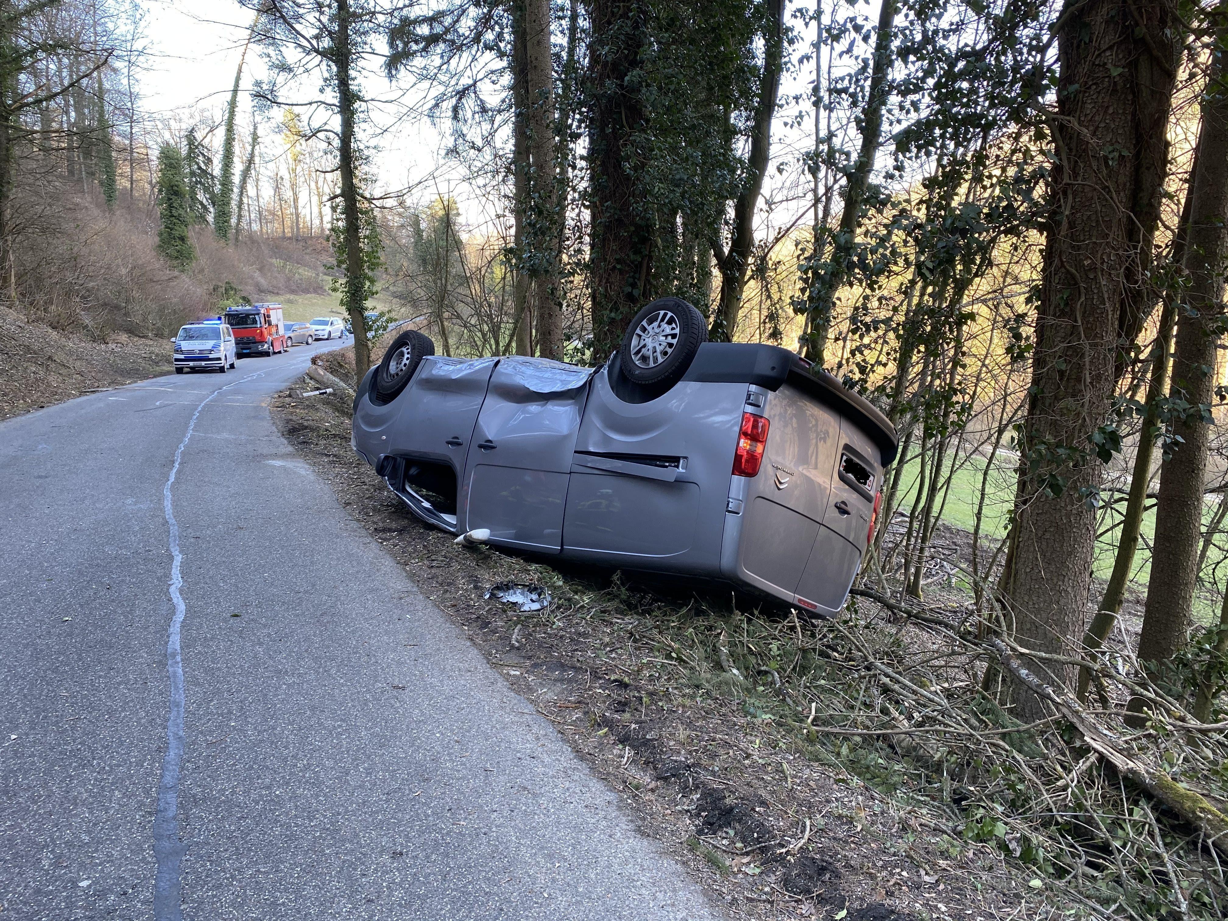 Das Auto wurde von einem herabrutschenden Baum getroffen.