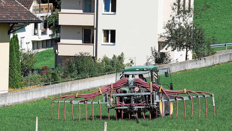 Mit einem Schleppschlauch wird die Gülle nah am Boden ausgetragen. (Bild: Boris Bürgisser)