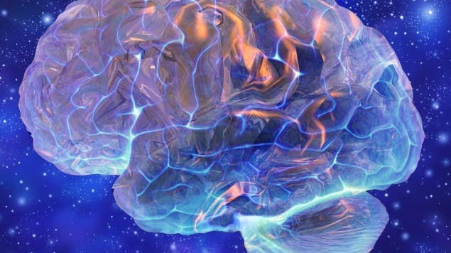 Gewisse Gehirne sind offenbar eher befähigt, «Stimmen zu hören», als andere. (image/science images)