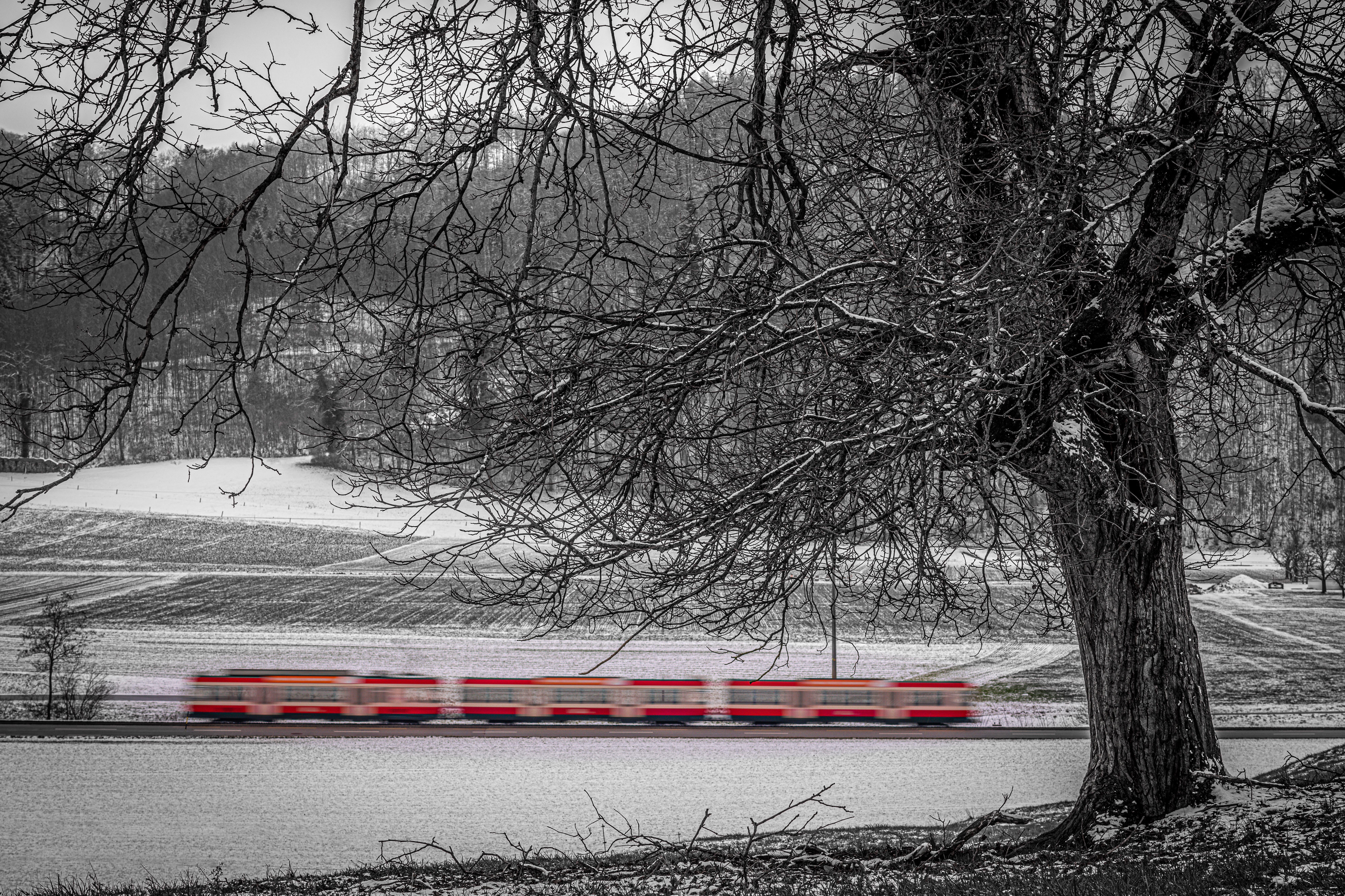 """Wenn der Schnee weg ist, verschwindet auch die """"Crèmeschnitte""""! Noch knapp 2 Monate (bis Ostern) bewegt sich diese Zugskomposition durchs Waldenburgertal."""