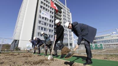 Zum Auftakt des Baus des DSM-Campus in Kaiseraugst erfolgte jetzt der Spatenstich. (Zvg / Aargauer Zeitung)