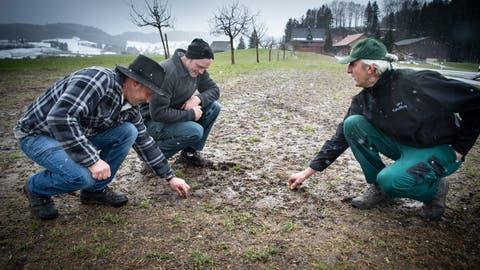 Was tun, wenn die Wiese wie ein Acker aussieht? Die LandwirteRichard Brändle, Roman Jung und Martin Künzli (von links) diskutieren Strategien. (Bild: Ralph Ribi, Kirchberg, 15. März 2021)