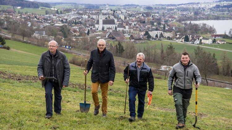 Dank ihnen wird Sempach zum Weinbaugebiet: Die Initianten Beat Felder und Franz Schwegler sowie die Landbesitzer Martin und Lukas Gassmann (v.l.). (Bild: Nadia Schärli (16. März 2021))