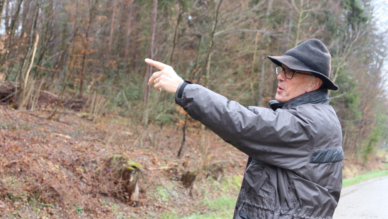 Er kennt die Gegend wie seine Hemdtasche: Der Förster Peter Rieser zeigt, wo die Haselsträucher gestutzt wurden. (Lydia Lippuner / Limmattaler Zeitung)