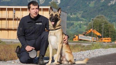 Gemeinsam mit seinem Hundeführer Thomas Steiger hat der Polizeihund Jango im Herbst 2020 im Alter von drei Jahren die Ausbildung zum Kombihund abgeschlossen. (Bild: PD)