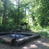 Die Grillstelle am Fitnesstrail im Gebiet Moos in Frick. (Dennis Kalt (3. Juni 2020))