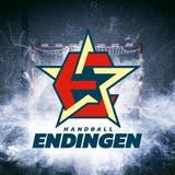 Unter dieser Bildmarke tritt Handball Endingen ab der kommenden Saison in der NLA auf. (Bild: zvg)