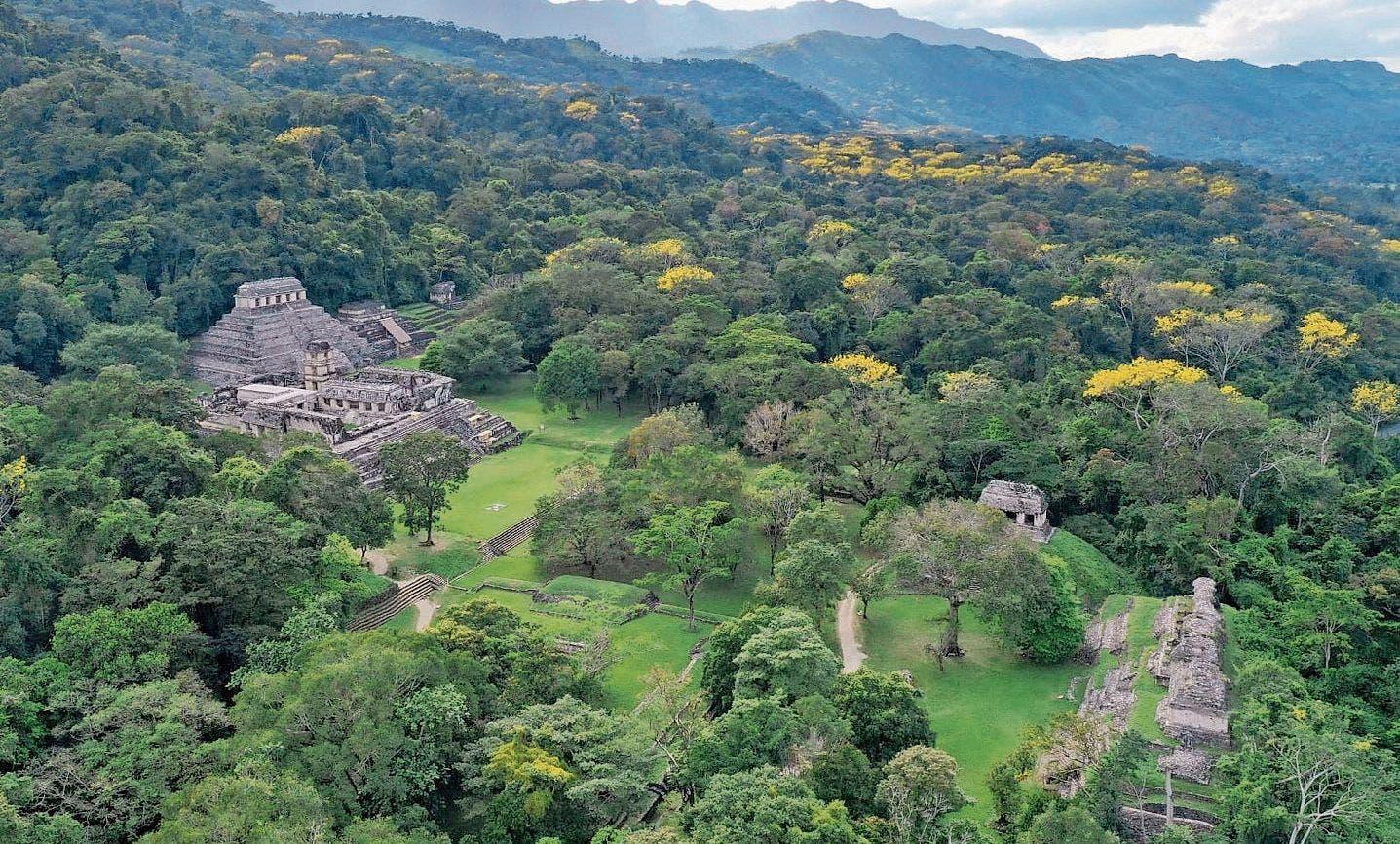 Die eindrückliche Maya-Stätte Palenque in Mexico.