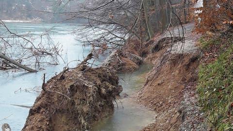 Der Uferweg fiel einfach ins Wasser: So präsentierte sich die Situation an der Limmat in Oetwil Ende Januar nach den starken Schneefällen. (zvg)