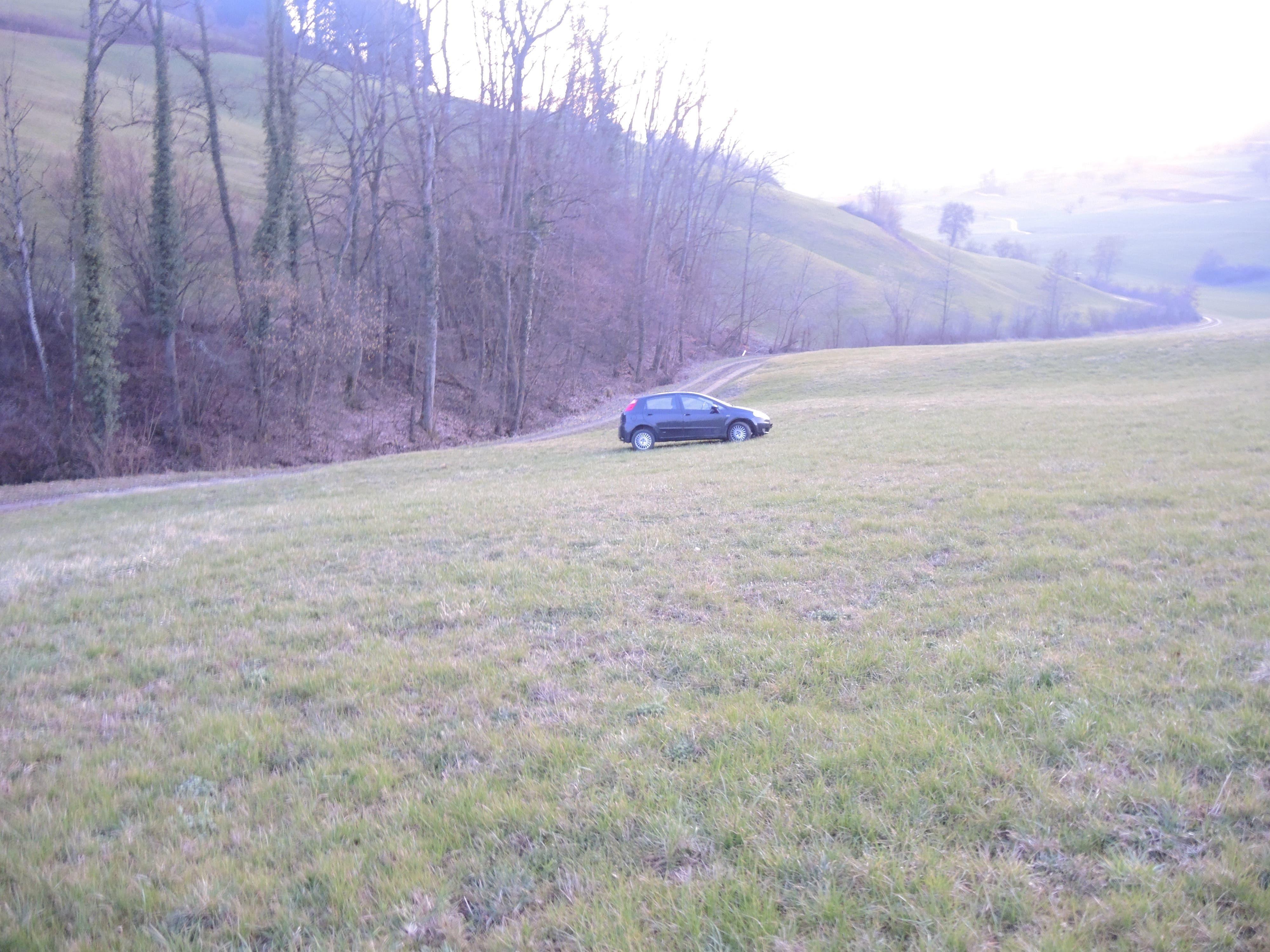 Bilder der Kantonspolizei Aargau zum Ausweichmanöver und Fahrzeugschaden in Will AG am 01.03.21