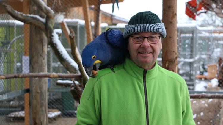 Rolf Lanz, Leiter des Vogelparks Ambigua, hatte auf ein Zeichen der Öffnung aus Bern gehofft. (Dennis Kalt (Zeihen, 11. Januar 2019))