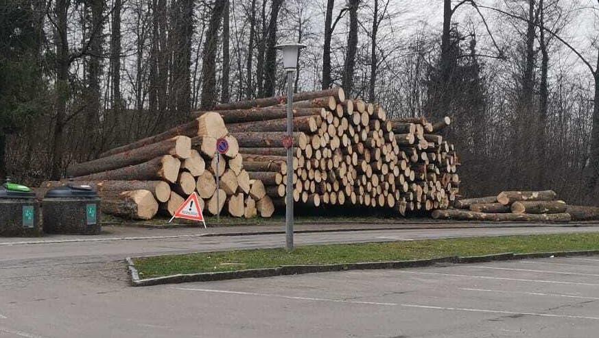 Die Baumstämme stapelten sich vor dem Engstringer Wald. Das fiel auch einer Leserin der «Limmattaler Zeitung» auf. (Leserbild/Limmattaler Zeitung)