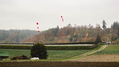 Ballon-Aktion der IG Nein zur Aushubdeponie Steindler/Teufermoos in Würenlos, aufgenommen am 7.11.2020. (Bild: zvg)